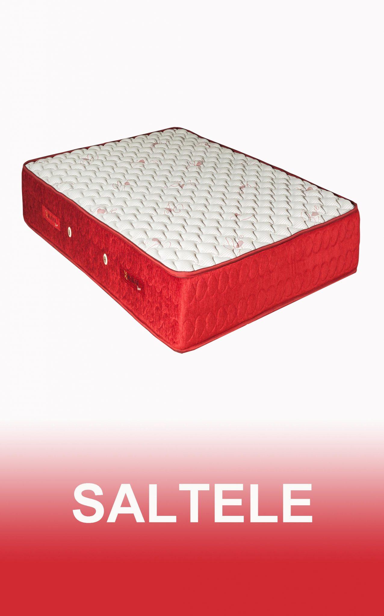 banner SALTELE 215x 345