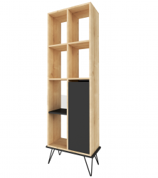 ALVES BOOKCASE 05